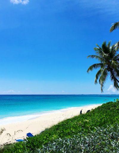 Beach Ocean HQ
